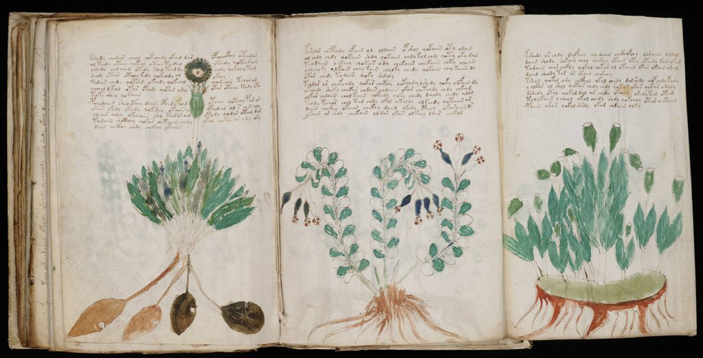 4. The Voynich Manuscript: The Voynich manuscript is an illustrated codex hand-written in an unknown writing system. The book has been carbon-dated to the early 15th century (1404–1438), and may have been composed in Northern Italy during the Italian Renaissance. The text is written from left to right, and most of the pages have illustrations or diagrams. While many speculate the writing may be nonsense, some have identified a semantic pattern in the writing; suggesting that it is a cipher-text with a message. The Voynich manuscript has been studied by many professional and amateur cryptographers, including American and British codebreakers from both World War I and World War II. No one has yet succeeded in deciphering the text, and it has become a famous case in the history of cryptography. The mystery of the meaning and origin of the manuscript has excited the popular imagination, making the manuscript the subject of novels and speculation.