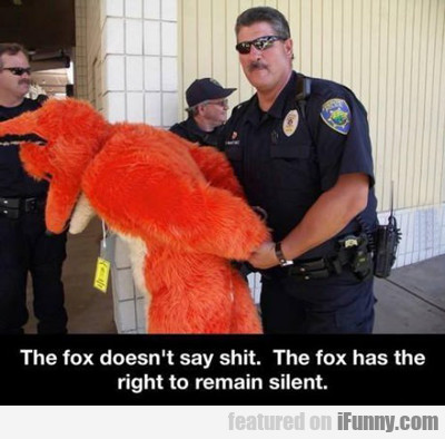 The Fox Doesn't Say Shit...
