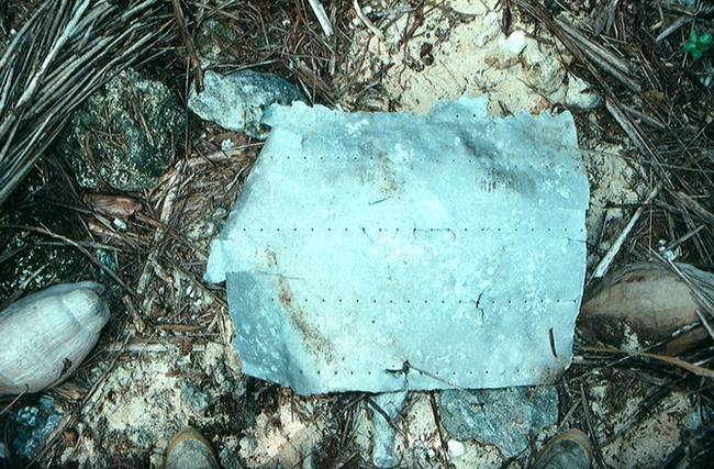 This fragment of Earhart's airplane might be the first step in finding out what really happen to the plane.