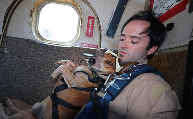 People might not understand why this dog and owner duo go sky diving...