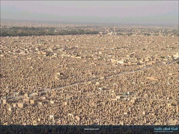 Looks like a city. Not a city.
