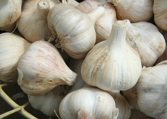 2.) Fear of Garlic