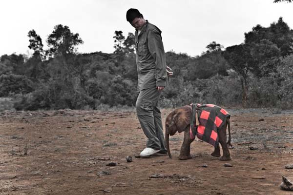 2.) Even elephants are no match for him.
