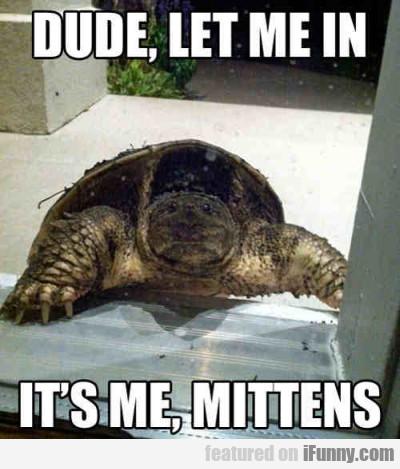 Dude, Let Me In