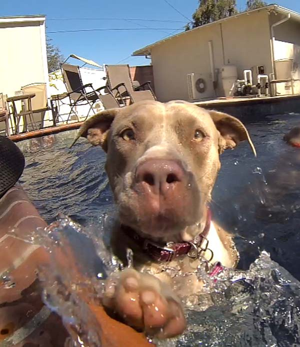 While living at her foster family's house, she learned many new things, like how to swim...