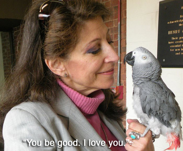 "11. Irene Pepperberg had a beautiful relationship with her parrot, Alex. When he died in 2007, his last words to her were: ""You be good - I love you."""