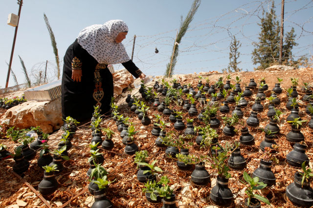 Residents of a Palestinian village have planted flowers in hundreds of spent Israeli tear gas grenades to honor those killed during their weekly protests against Israel's West Bank separation barrier.