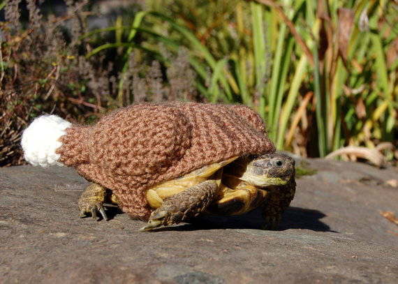 5.) Turkey-Shaped Turtle Cozy