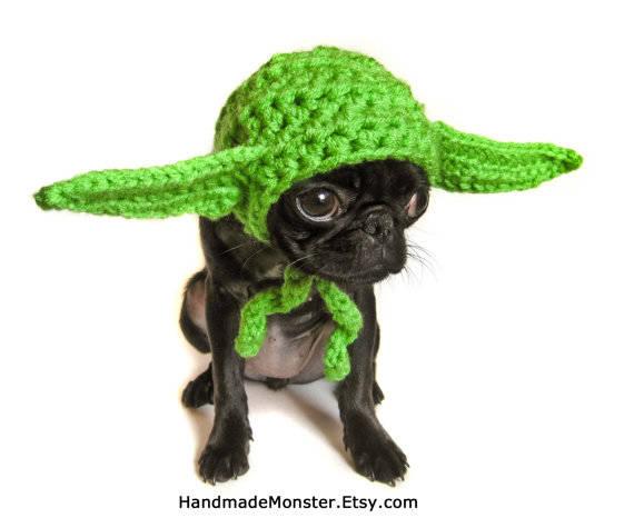 4.) Yoda Dog Hat