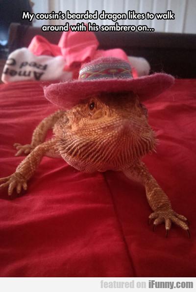 My Cousin's Bearded Dragon Like To Walk Around...