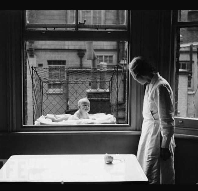 5.) The Window Baby Cage.