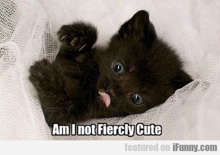 Am I Not Fiercly Cute