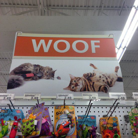 6.) I knew dogs were bad influences.