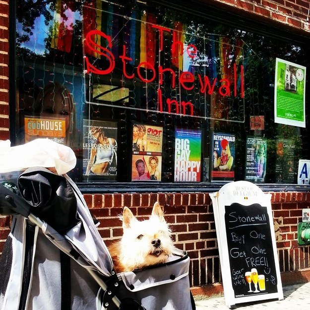 Visiting the Stonewall Inn, a gay New York City landmark.