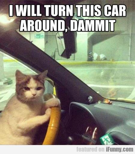 I Will Turn This Car Around, Dammit..