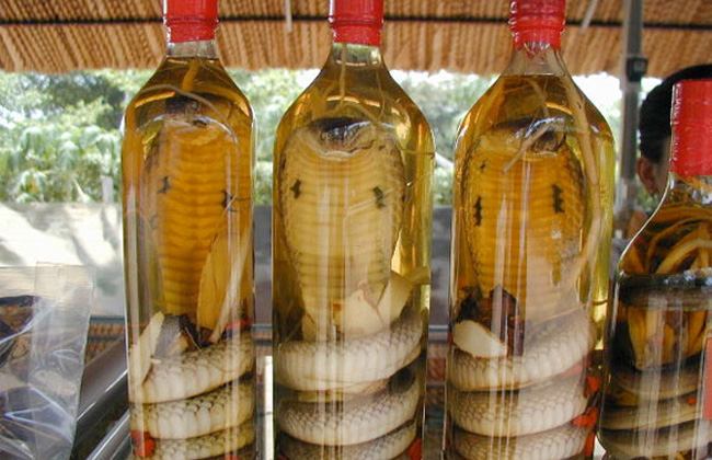 2) Live Cobra - In the Vietnamese village of Le Mat near Hanoi, they will rip out a snake's still-beating heart and serve it to you in a bowl. (Pictured here is cobra wine)